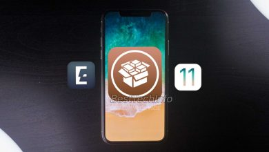 Jailbreak iOS 11.4 and iOS 11.3.1
